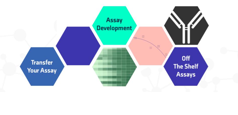 assay development small molecules drug discovery